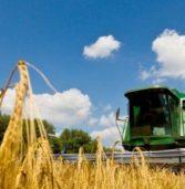 Млинівщина лідирує по збору ранніх зернових