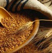 Україна збільшує експорт зернових культур