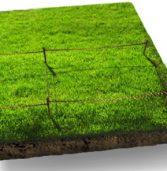 На онлайн-торгах вартість оренди землі зростає