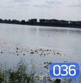 Яку ж рибу можна ловити у водоймах Млинівщини