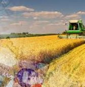 В області зросли виплати за оренду земельних паїв