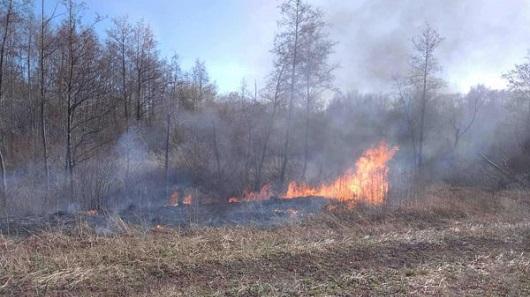 Волинянин повідомив про пожежу на Млинівщині